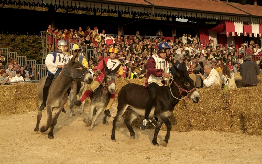Donkey Palio, Alba International Truffle Fair, Italy © Romeocharly | Dreamstime 27019879